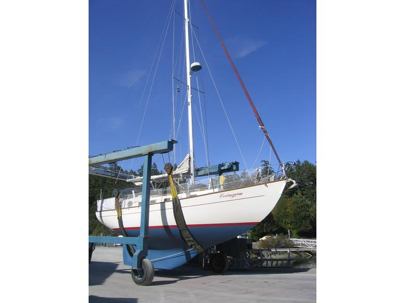 MC 39 Sloop