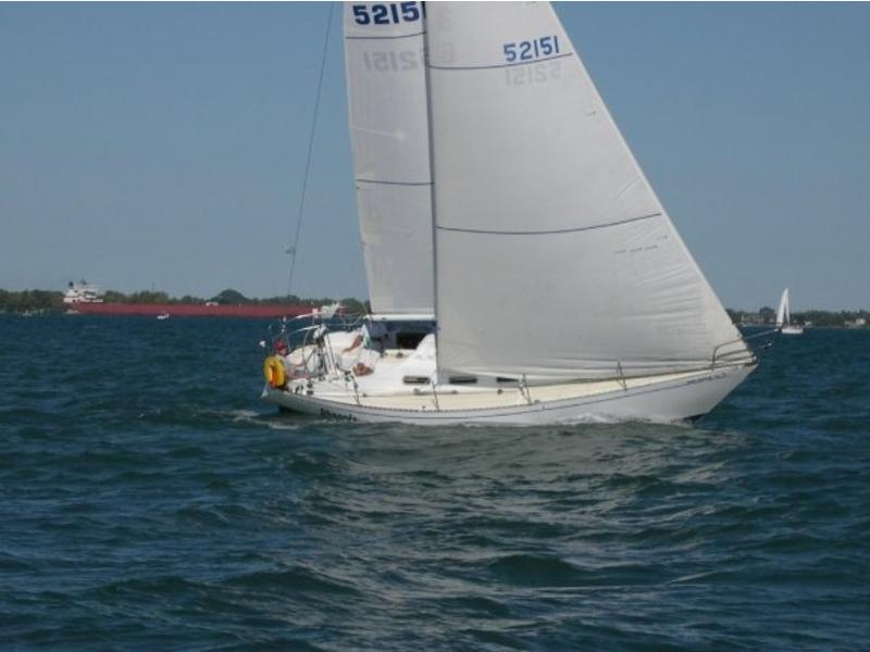 Orion 35