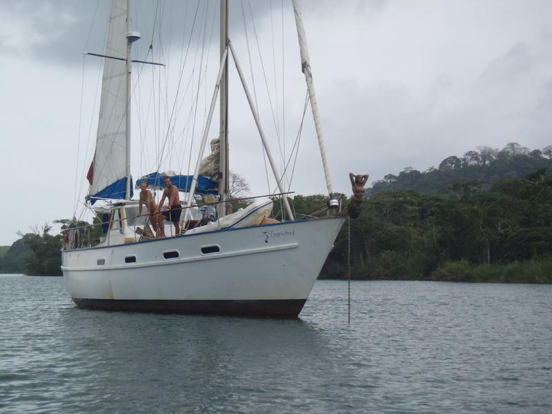 Custom Cruising Liveaboard